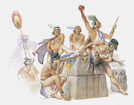 human sacrafice essay Essay human sacrifice in the incan moche and wari cultures and 90,000+ more term papers written by professionals and your peers.
